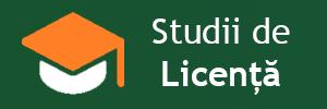 Studii de licență